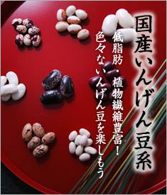 国産いんげん豆