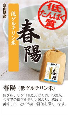 春陽(低タンパク質米・低グルテリン米)